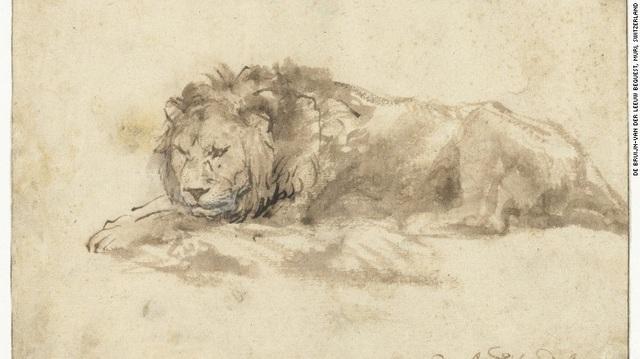 Bức phác họa một con sư tử thuộc sở hữu của Bảo tàng Rijksmuseum ở Amsterdam, Hà Lan, là một trong những bức phác họa nghiên cứu động vật hiếm hoi còn lại cho tới hôm nay của danh họa Rembrandt van Rijn.