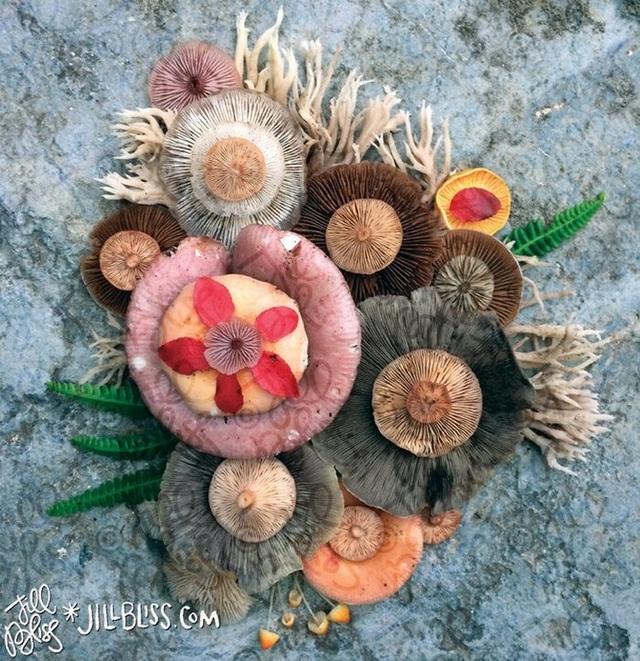 Đây phải chăng là loài nấm đẹp nhất trên Trái Đất? - 16