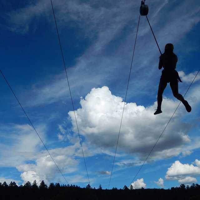 Tác phẩm Zip-line Adventure - Ryan Hughes, 13 tuổi, Mỹ