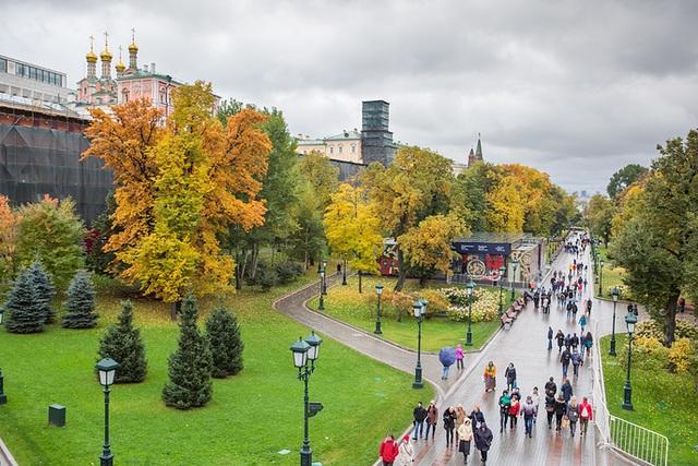 Lá vàng rụng ở công viên Novodevichy Ponds. (Ảnh: TASS)