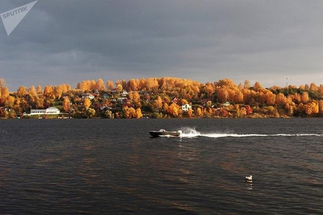 Hàng cây chuyển màu bên sông Volga. (Ảnh: Sputnik)