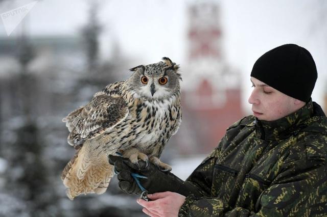 Một chiến sỹ bảo vệ điện Kremlin và người huấn luyện.