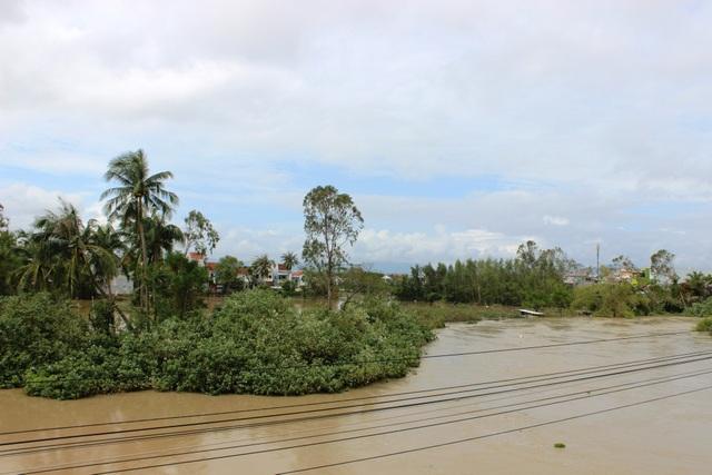 Mực nước tại Sông Ba đoạn qua TP. Tuy Hòa (Phú Yên)