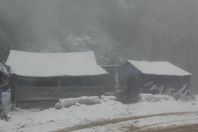 Và đây là hình ảnh tuyết phủ kín khu rừng biên giới ở khu vực cửa khẩu phụ Buộc Mú, xã Na Ngoi, huyện Kỳ Sơn vào ngày 24/1/2016.