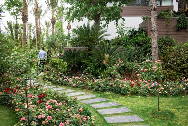 Flamingo Lux Rose Kingdom – Vương quốc hoa hồng quý có tổng mức đầu tư lên đến 500 tỷ đồng