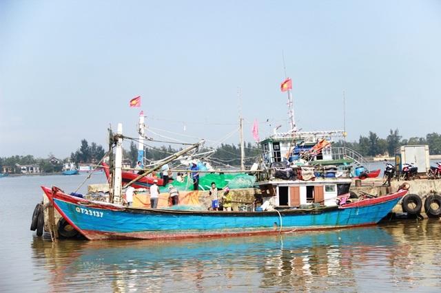 Các cảng biển bắt đầu hoạt động nhộn nhịp trở lại