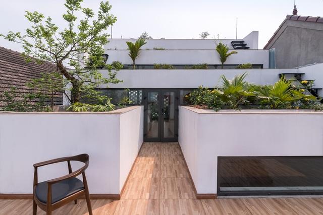 Tổ ấm ruộng thực sự là không gian mà không ít người mơ ước, nhất là khi xu hướng xây nhà kết hợp vườn trồng cây xanh đang ngày càng phổ biến. Ngoài ra, đó cũng là thú vui tao nhã của những người yêu thiên nhiên.