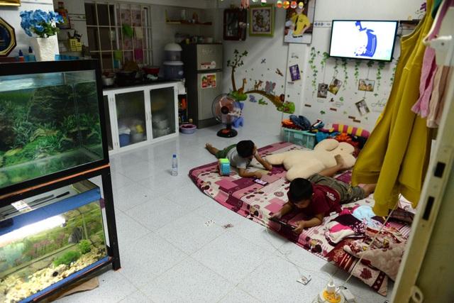 Diện tích mỗi căn hộ khoảng 30 m2, có gác để chứa đồ đạc. Tùy vào cách sắp xếp của mỗi gia đình để căn nhà có nhiều không gian.
