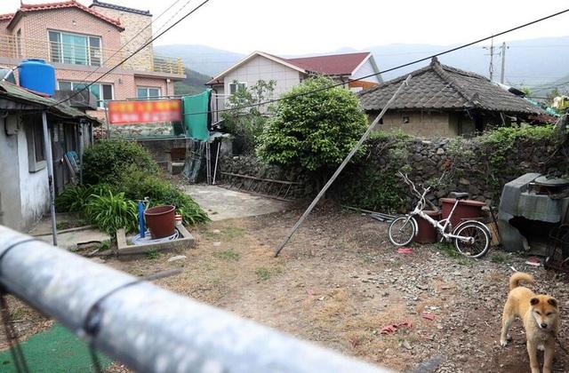 Khu vực xung quanh nhà tân Tổng thống Hàn Quốc