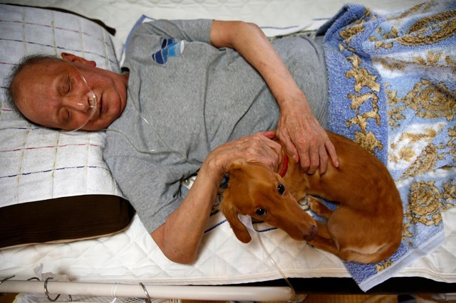 Ông Mitsuru Niinuma bên cạnh con chó mà ông yêu quý (Ảnh: Reuters)