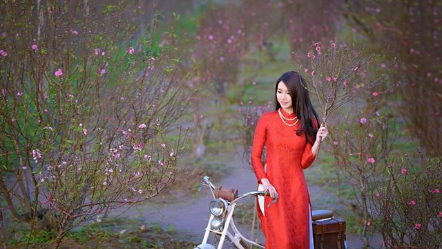 Vườn đào Nhật Tân luôn là điểm đến mùa Xuân của bạn trẻ Hà thành. (ảnh: Đinh Văn Linh)