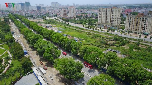 Tuyến đường cũng có hàng cây đẹp, tán rộng nhất nhì Hà Nội.