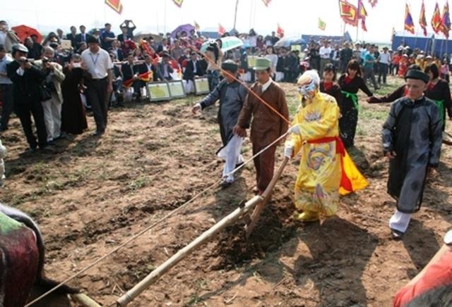 Khác với mọi năm, tại lễ hội năm nay ngoài việc thực hiện nghi thức cày ruộng truyền thống bằng trâu, năm nay còn có thêm cày máy.