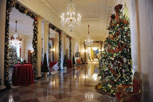 Vì sao lễ Giáng sinh nhất định phải có cây thông? - 5