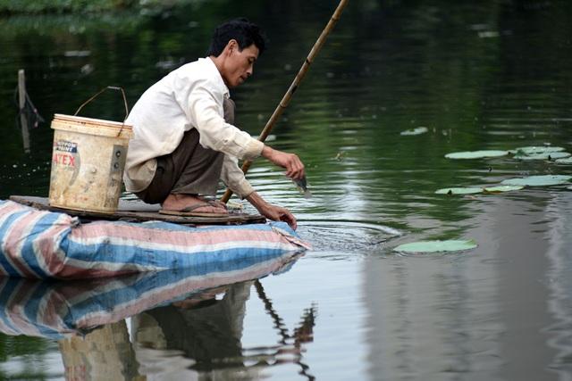 Đôi khi may mắn thì có mớ cá rô về kho ăn được mấy ngày, nhưng nhiều bữa không bắt được cá thì phải đi hái mớ rau dại về luộc lên ăn với cơm. Anh Qúy, quê Cà Mau chia sẻ.