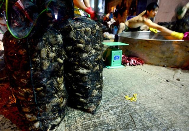 Chợ cua hoạt động trên vỉa hè từ 2h đến 5h sáng, sau đó các tiểu thương quét dọn sạch sẽ vỉa hè để trả lại mặt bằng.