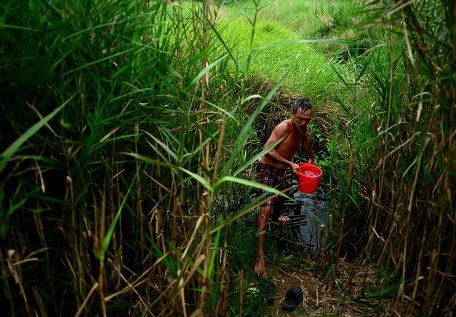 Không nước sạch, mỗi ngày người đi làm về họ phải dùng nước ở các ao tù gần đấy.