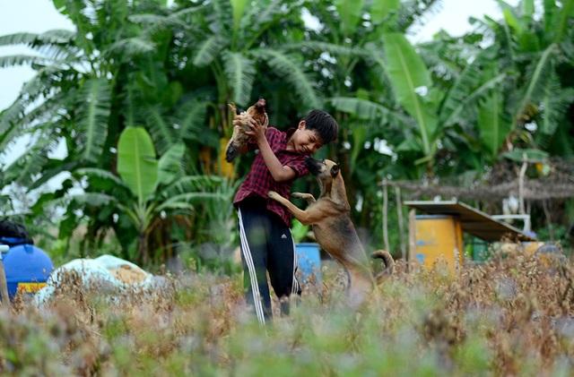 Một buổi đi học ở lớp tình thương, buổi còn lại Vinh (12 tuổi) ở nhà trông nhà cho bố mẹ đi bán cá. Lủi thủi 1 mình nên Vinh thường tự nghĩ ra trò chơi với chú chó.