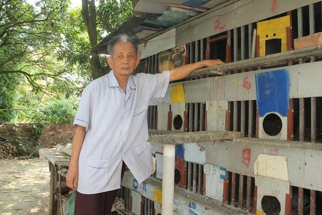 Ông Nguyễn Công Uẩn nuôi chim bồ cầu để có kinh phí tố cáo tham nhũng (Ảnh: V.L)