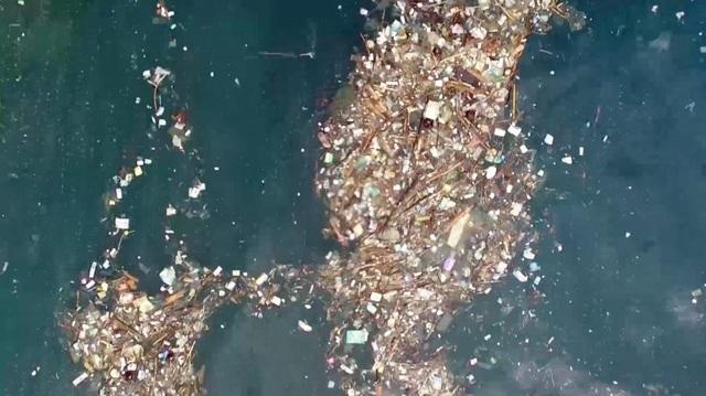 Trải nghiệm bơi trong đại dương rác và lời cảnh tỉnh về ý thức của con người - 1