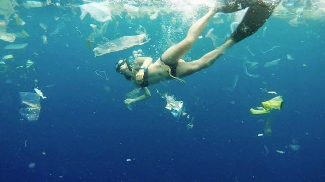 Trải nghiệm bơi trong đại dương rác và lời cảnh tỉnh về ý thức của con người - 3