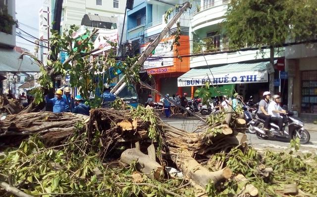 Nha Trang vẫn ngổn ngang sau bão số 12 trưa 5/11 dù lực lượng chức năng làm việc cật lực để khắc phục hậu quả