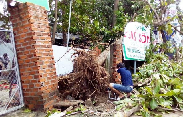 Khu nhà hàng Nam sông Cái Nha Trang (phường Ngọc Hiệp, TP Nha Trang) cũng bị thiệt hại nặng sau bão