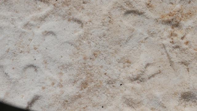 Do đó, muối và các khoáng chất ở Biển Chết được sử dụng để sản xuất các loại mỹ phẩm. Israel cũng nổi tiếng với các loại mỹ phẩm làm từ các loại khoáng chất và muối khai thác từ Biển Chết.