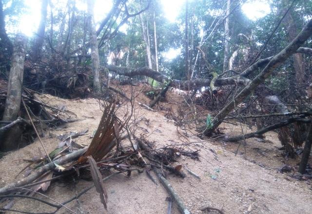 Cảnh những khu rừng tại Thường Xuân bị xới tung để tìm đá quý