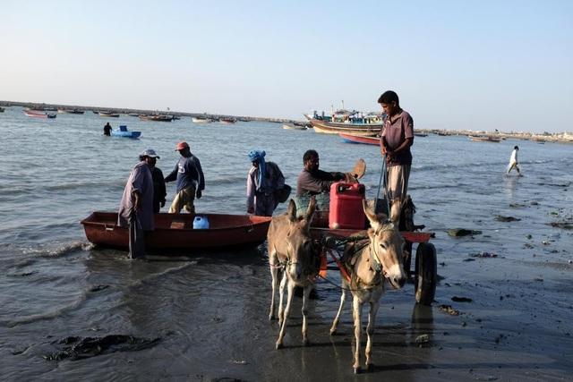 Ngư dân Pakistan đánh bắt cá ở Gwadar (Ảnh: Reuters)