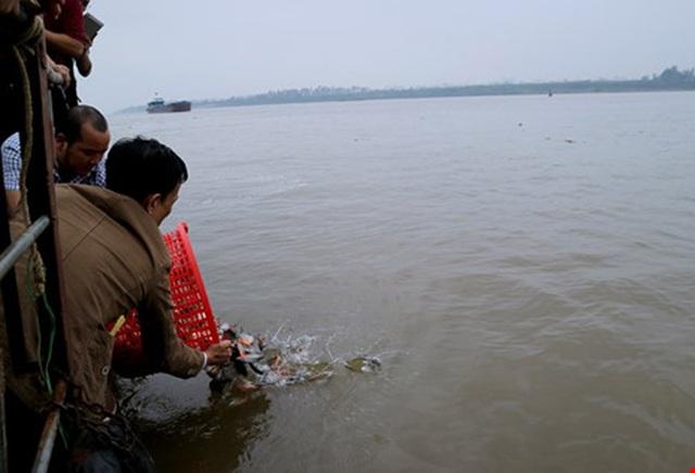 Hình ảnh người dân thả cá chim trắng xuống sông Hồng ngày 5/2 (Ảnh Vietnamnet).