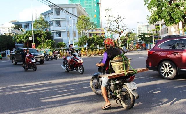 Trong chiều 29 và 30 tháng Chạp, sau khi có mưa lớn kéo dài thì thời tiết tại Nha Trang bất ngờ hửng nắng và ấm dần. Dòng người cũng hối hả đổ về chợ hoa Tết mua sắm cho mình những chậu hoa ưng ý nhất để chưng Tết Đinh Dậu