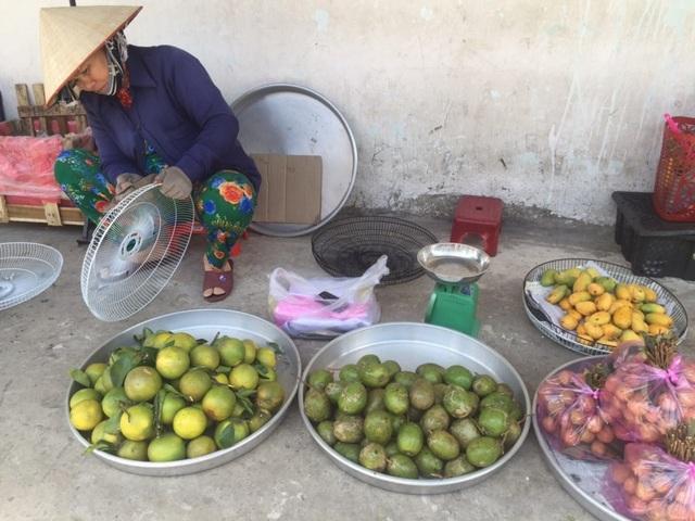 Người bán cho biết xoài mút được thu mua từ Châu Đốc (An Giang).