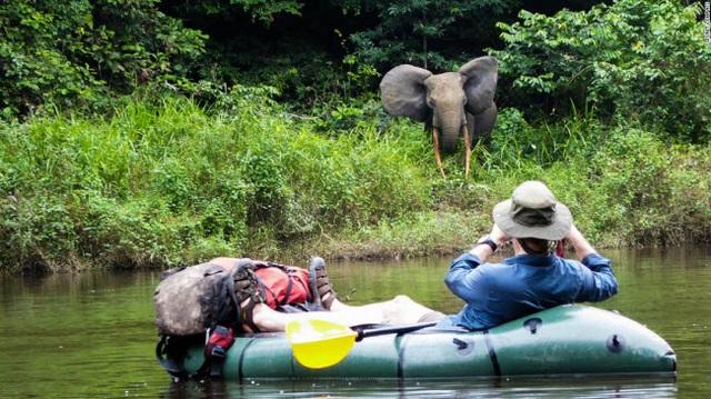 Những tour khám phá động vật hoang dã hấp dẫn nhất thế giới - 1