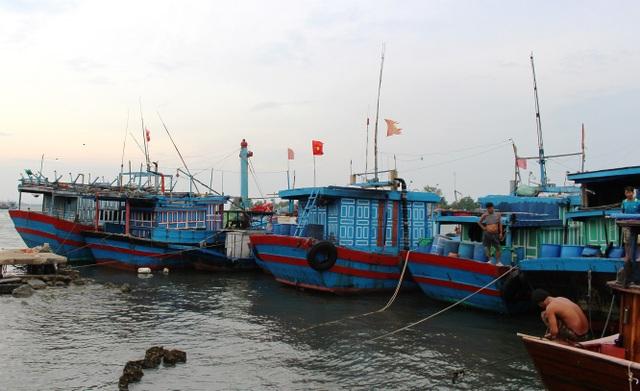 Ngư dân Quảng Nam cho tàu vào trú ATNĐ ở cảng cá An Hòa
