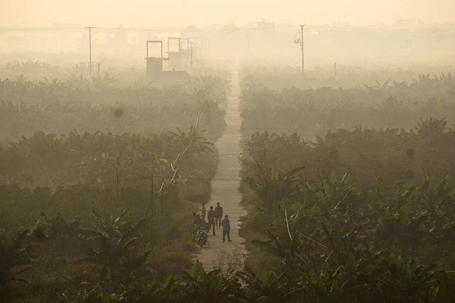 Bình minh với sương sớm bảng lảng trên bãi sông dưới chân cầu Vĩnh Tuy, bên phía bờ tả thuộc địa phận quận Long Biên, Hà Nội.