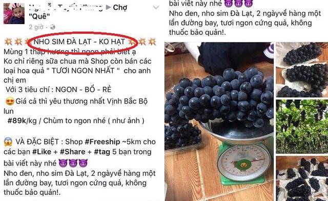 Nho sim Đà Lạt được bán với giá 89.000đ/kg, trong khi cùng loại nho này người bán khác quảng cáo nho Mông Tự - Trung Quốc chỉ có giá 65.000đ/kg. Nhập nhèm nguồn gốc, giá nho