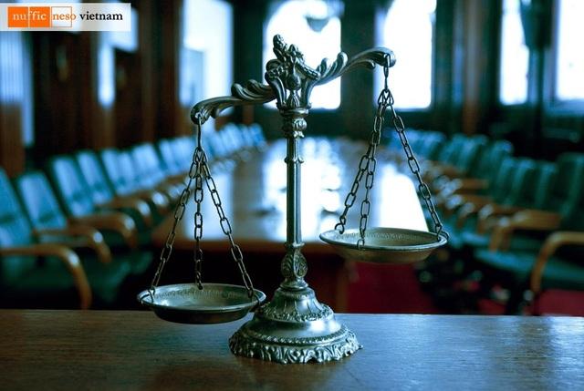 Tại sao nên du học ngành luật tại Hà Lan? - 1