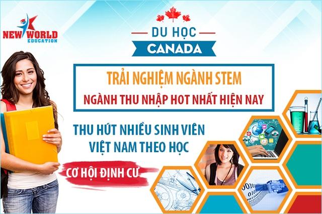 Sinh viên Việt Nam du học Canada nên chọn khối ngành STEM – cơ hội việc làm và định cư cao - 1
