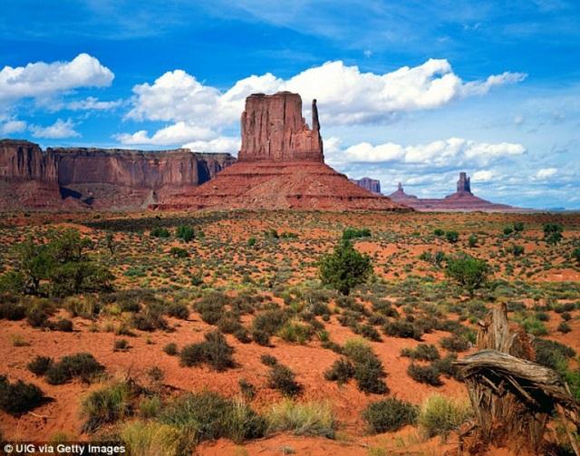 Khu vực sa mạc trong Xứ Navajo, nơi xảy ra sự việc thương tâm.