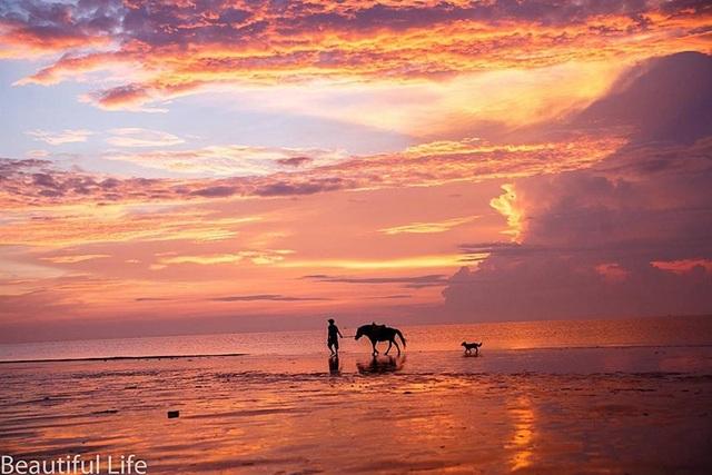 Đón ánh mặt trời rực rỡ trên biển Hải Tiến - 1