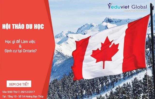 Du học Canada: Học gì để làm việc & định cư tại Ontario? - 1