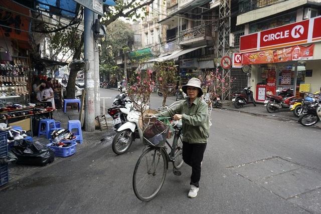 Những chuyến xe hoa mang không khí tết trong lòng phố cổ Hà Nội.