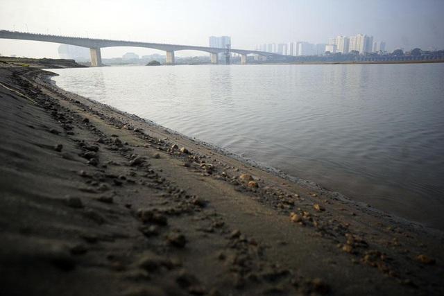Bãi sông này chỉ cách hồ Gươm - trái tim của Hà Nội - khoảng 5km nhưng cảnh vật khác biệt hoàn toàn so với màu sắc đô thị phía bên kia sông.