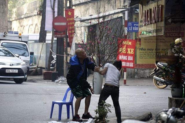 Cành đào mới được cắm trang trí cho một quán bia trên phố Phùng Hưng.