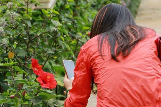 Điểm đến hấp dẫn cho người đam mê hoa hồng dịp 30/4 tại Hà Nội - 13