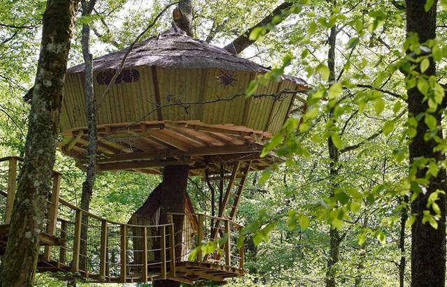 Nhà trên cây theo kiểu thô sơ, đơn giản nhất nhưng rất bình yên.