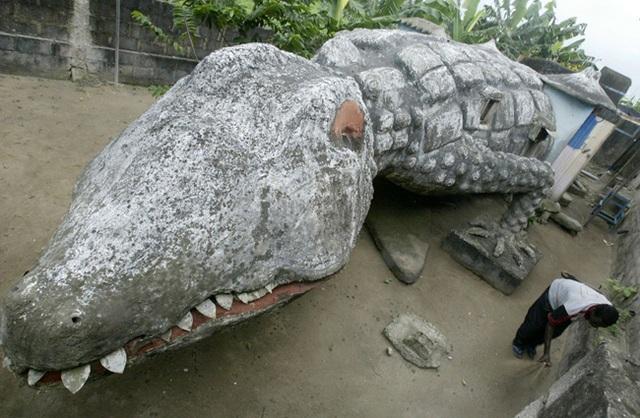 Nhà hình cá sấu siêu độc đáo.