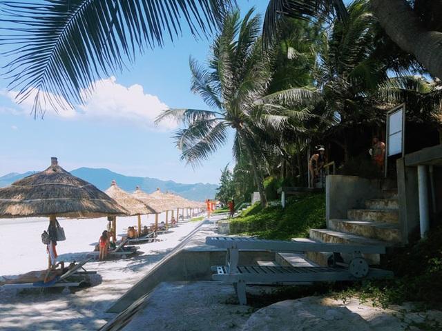 Hàng dừa ngả bóng dài trên cát tạo một khung cảnh nên thơ
