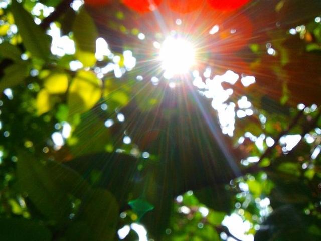 Hà Nội trời hửng nắng, nhiệt độ cao nhất 21 độ C - 1